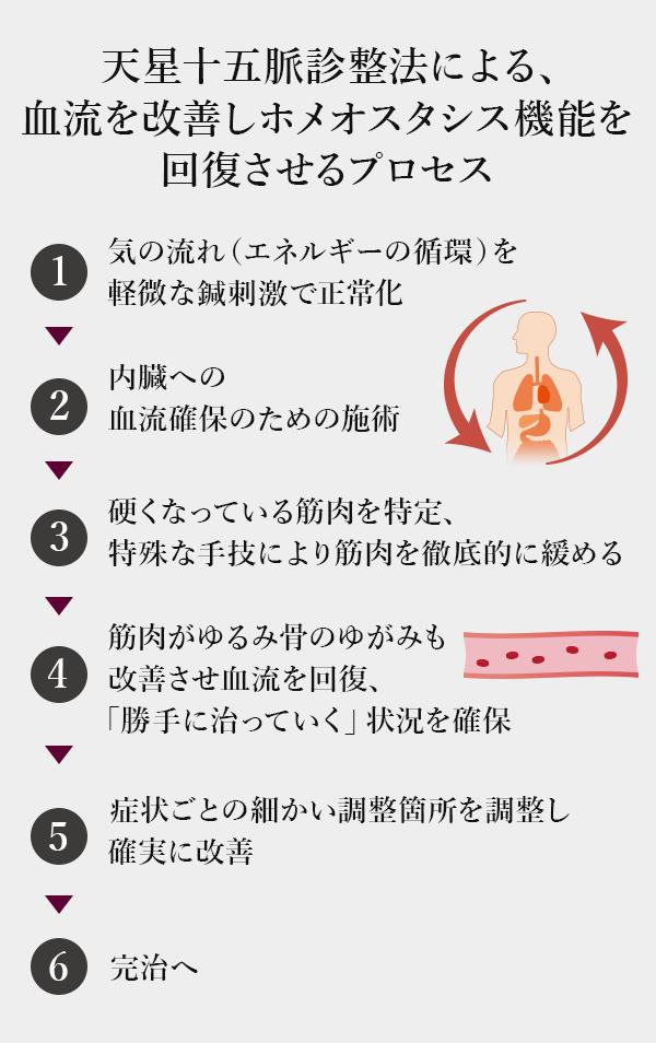 天星十五脈診整法による血流を改善しホメオスタシス機能を回復させるプロセス